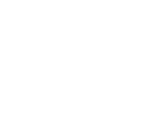Eagle logo playing cards white