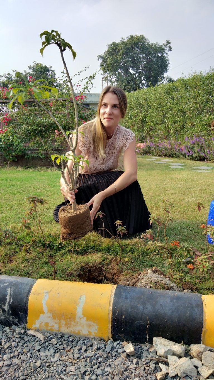 Environment Planting Trees Parkson Cartamundi India